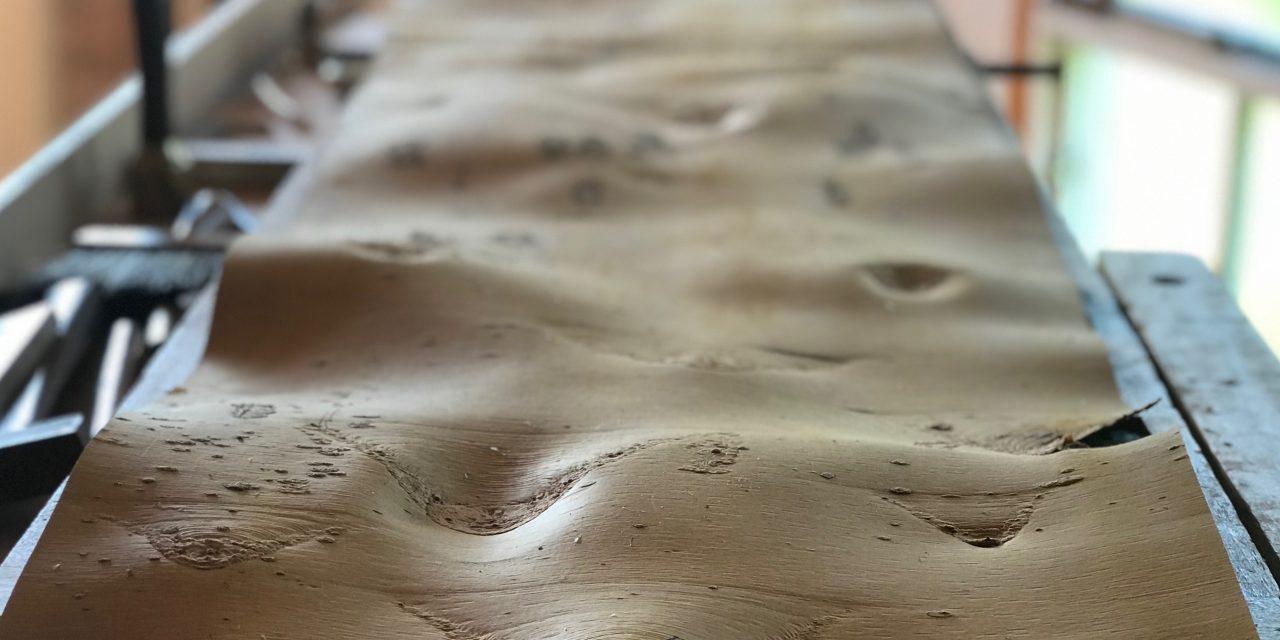 Episode 518 – The Birches Bark